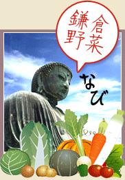 鎌倉野菜の特徴