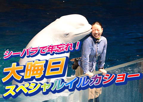 横浜・八景島シーパダイス 大晦日スペシャルイルカショー