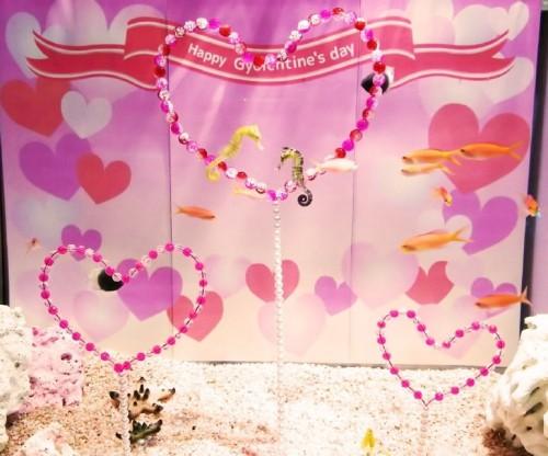 LOVE LOVE お魚たちのバレンタイン