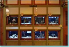 「おもしろい」水族館内の造りが小学校